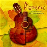 Flamenco: Patrimonio de la Humanidad (4 CD + BOOK) - Several Artist