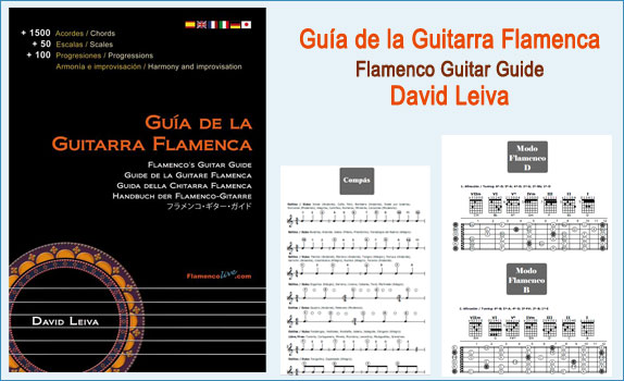 11 ingles -Guia Guitarra Flamenca, David Leiva